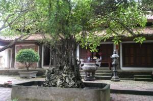 タイフォン寺の前庭