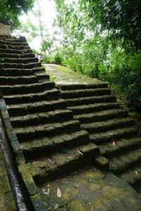 苔に包まれたオン石の階段